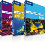 Diving and snorkelling guides